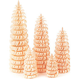Coiled Trees without Trunk Natural - 5 pieces - 10 cm / 3.9 inch
